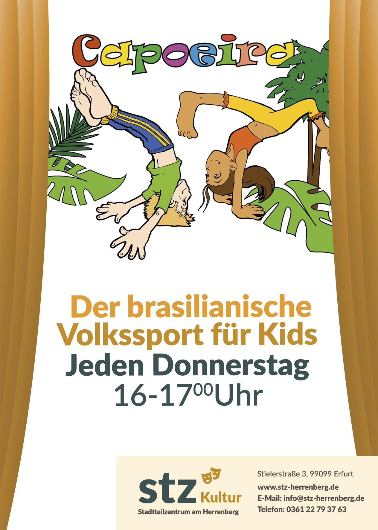 stz_flyer_A6_Capoeira_neu